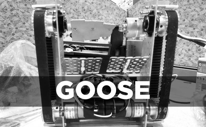 Designing an Advanced Autonomous Robot: Goose